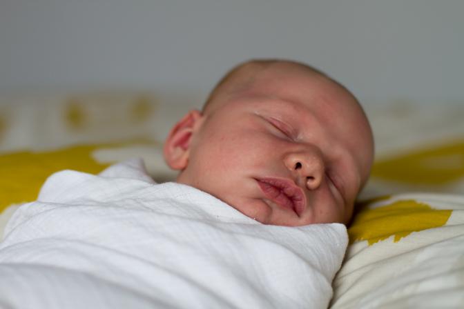 portrait van oevern newborn for wordpress rap-4787